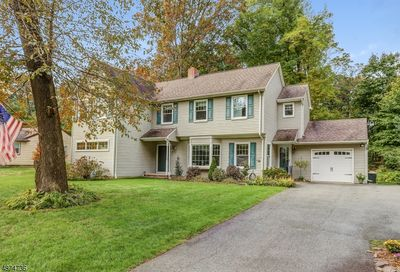 55 Red Gate Rd Parsippany-Troy Hills Twp. NJ 07005-9757