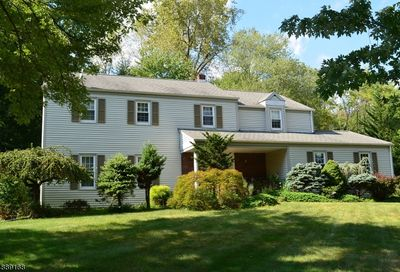 15 Independence Dr Hanover Twp. NJ 07981-2210