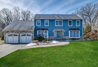 65 Forest Way Hanover Twp. NJ 07950-3264