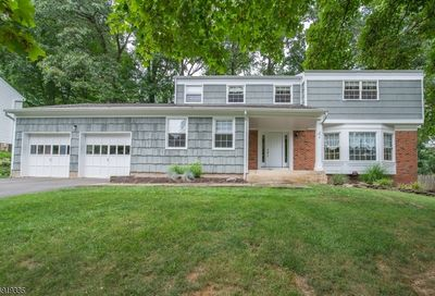 8 Wood Glen Way Parsippany-Troy Hills Twp. NJ 07054-9738