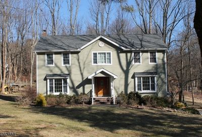 3 South Rd Chester Twp. NJ 07930-2739