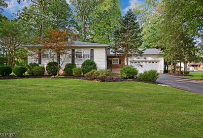 447 Brentwood Dr Piscataway Twp. NJ 08854-3607