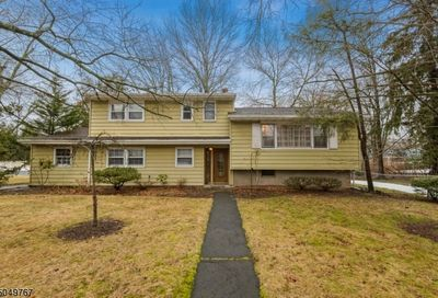 897 Ascot Rd Scotch Plains Twp. NJ 07076-2160