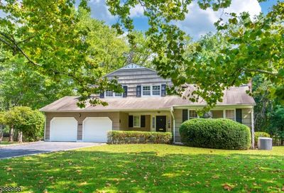 189 Chaucer Dr Berkeley Heights Twp. NJ 07922-1871