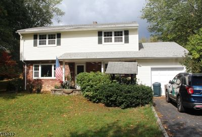 21 Ironia Rd Chester Twp. NJ 07836-9127