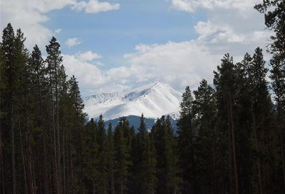 15 Elk Trail Leadville CO 80461