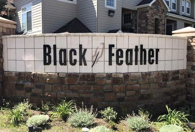 488 Black Feather Loop Castle Rock CO 80104