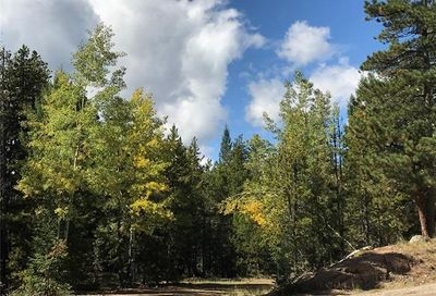 7290-2 Timbertrail Road Evergreen CO 80439