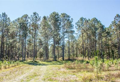 Lake Patience Rd Land O Lakes FL 34638