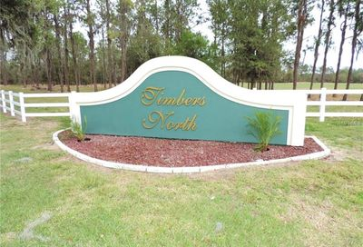 Timbers Drive Fort Meade FL 33841