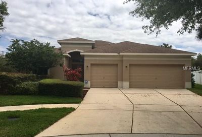 11119 Holly Cone Drive Riverview FL 33569