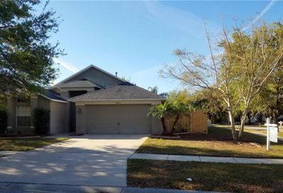 10109 Somersby Drive Riverview FL 33578