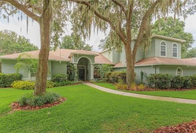 6231 Wild Orchid Drive Lithia FL 33547