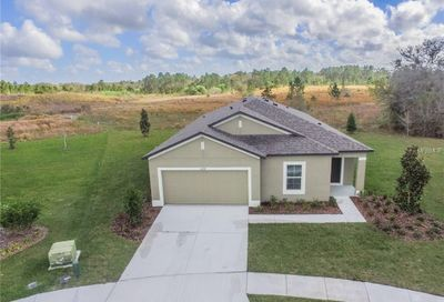 6747 Castle Green Place Zephyrhills FL 33541