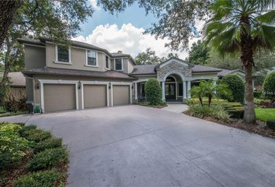 17836 Mission Oak Drive Lithia FL 33547