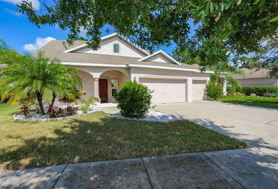 11772 Summer Springs Drive Riverview FL 33579