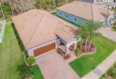 11856 Frost Aster Drive Riverview FL 33579