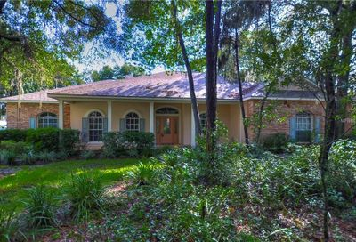 5308 Pine Rocklands Avenue Lithia FL 33547