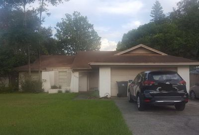 909 Black Knight Drive Valrico FL 33594