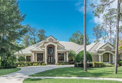 1348 Preservation Way Oldsmar FL 34677