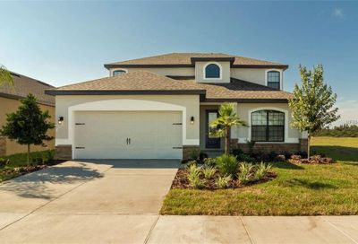 11851 Thicket Wood Drive Riverview FL 33579