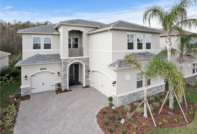 31034 Spruceberry Court Wesley Chapel FL 33543