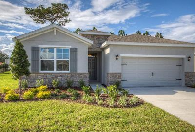 31697 Tansy Bend Wesley Chapel FL 33545