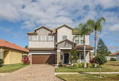 11908 Frost Aster Drive Riverview FL 33579