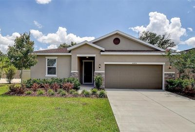 10404 Laguna Plains Drive Riverview FL 33578