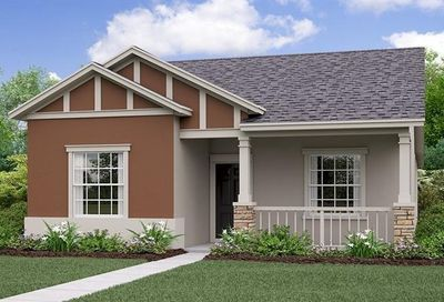 21117 Passive Porch Drive Land O Lakes FL 34637