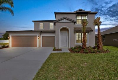 11119 Spring Point Circle Riverview FL 33579