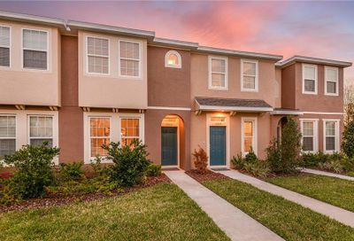 7029 Towering Spruce Drive Riverview FL 33578