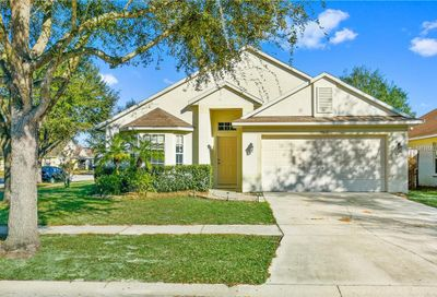 11617 Pure Pebble Drive Riverview FL 33569