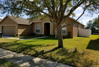 11911 Summer Springs Drive Riverview FL 33579
