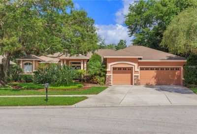 5603 Eagleglen Place Lithia FL 33547