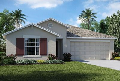 10216 Strawberry Tetra Drive Riverview FL 33578