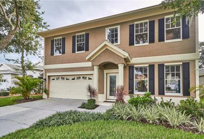 3736 Doral Street Palm Harbor FL 34685