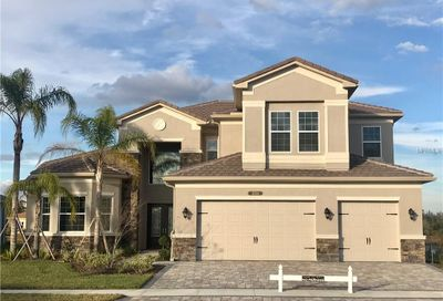 2724 Coco Palm Circle Wesley Chapel FL 33543