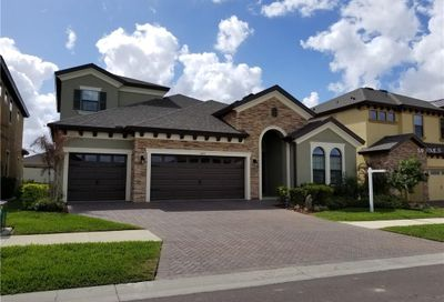 1005 Cavour Court Brandon FL 33511