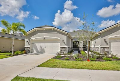 10305 Holstein Edge Place Riverview FL 33569