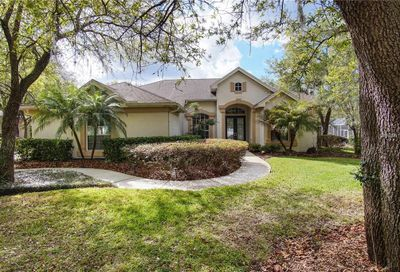 6003 Kestrel Point Avenue Lithia FL 33547