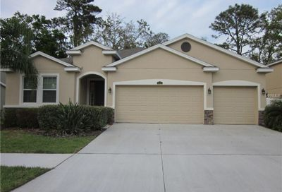 10406 Pleasant Spring Way Riverview FL 33578