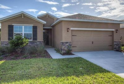 31585 Tansy Bend Wesley Chapel FL 33545