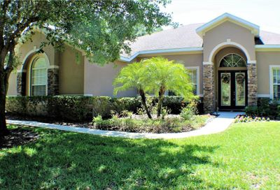 4206 Winding Vine Court Brandon FL 33511