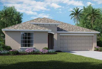 10219 Strawberry Tetra Drive Riverview FL 33578
