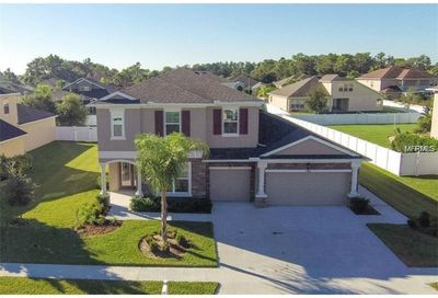11854 Newberry Grove Loop Riverview FL 33579
