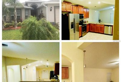 15406 Dakota Sky Place Ruskin FL 33573
