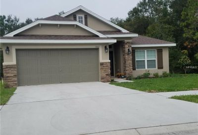 12213 Avondale Oak Place Riverview FL 33578