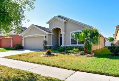 10203 Tapestry Key Court Riverview FL 33578