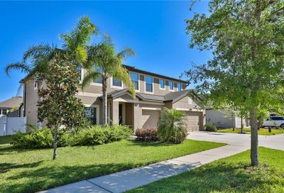 11804 Harpswell Drive Riverview FL 33579